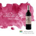 Music by D'Aria Pinotage/Shiraz 2013 – Vinho do Dia
